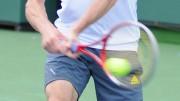 Gasquet et Simon huitièmes de finale Wimbledon