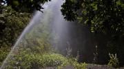 L'alerte canicule maintenue dans le Tarn et le Tarn et Garonne samedi et dimanche Photo DP