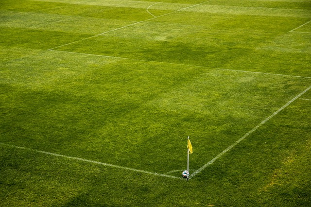 Foot. Toulouse est encore à 4 points de Reims et Ajaccio