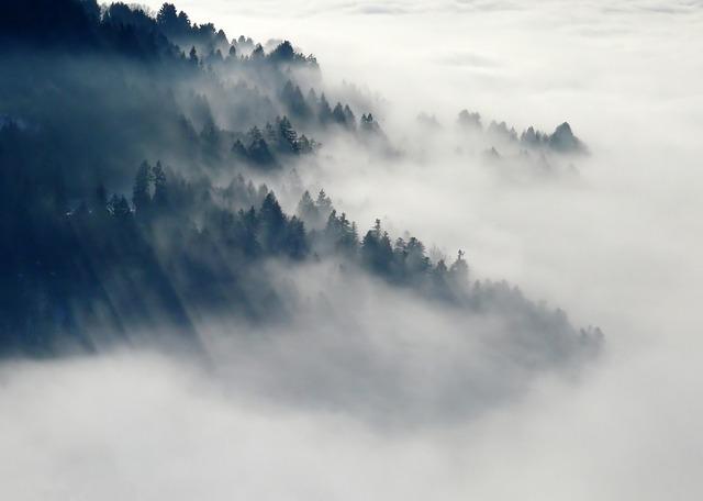 Météo Toulouse. brouillards puis soleil et 17 degrés jeudi après midi
