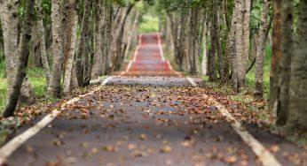 à Toulouse, Gagnac et Montbéron les 3 routes les plus pourries de Haute Garonne