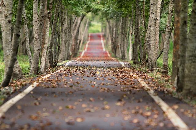 à Toulouse, Gagnac ou Montbéron, les 3 routes les plus pourries de Haute Garonne