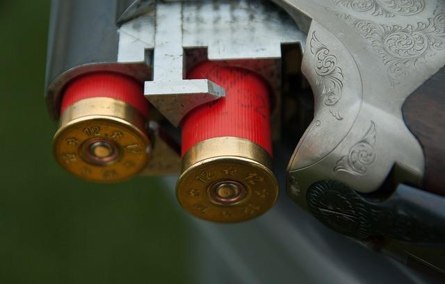 Deux chasseurs tués en Ariège et dans le Tarn et Garonne