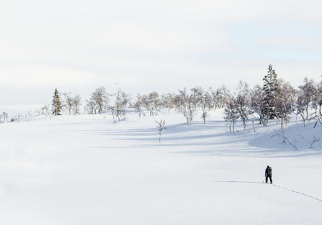 neige-les-webcams-des-stations-de-ski-des-pyrenees-font-le-buzz