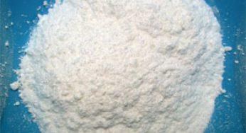 1 tonne de cocaïne saisie à Bayonne, 10 personnes arrêtées