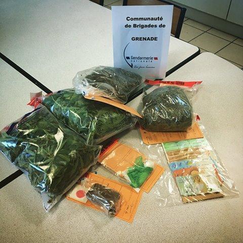 Grenade. un dealer se fait voler Cannabis et Cocaïne, dealer et voleur arrêtés