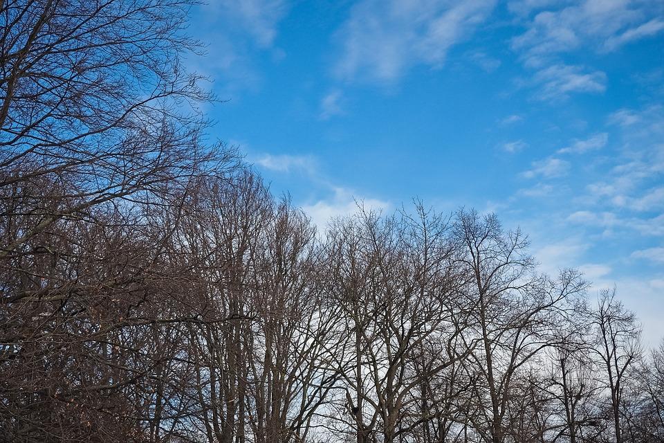 Soleil, nuages et 15 degrés mercredi après midi à Toulouse