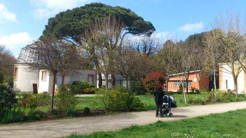 Vents violents. parcs et jardins fermés samedi à Toulouse