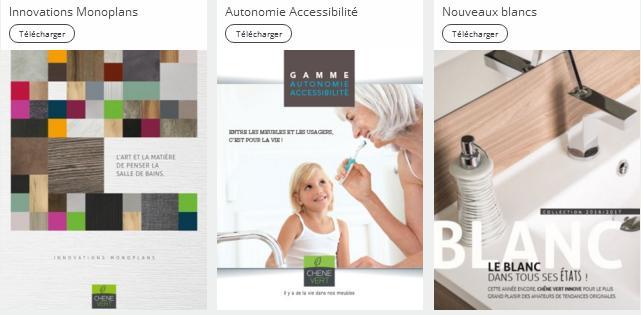 depuis albi le ch ne vert annonce une ann e 2017 en croissance. Black Bedroom Furniture Sets. Home Design Ideas