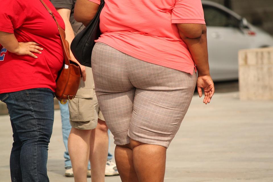 hausse de l'obésité en Europe