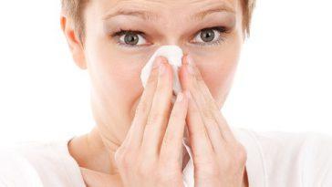 Alerte aux pollens de graminées cette semaine à Toulouse et la région