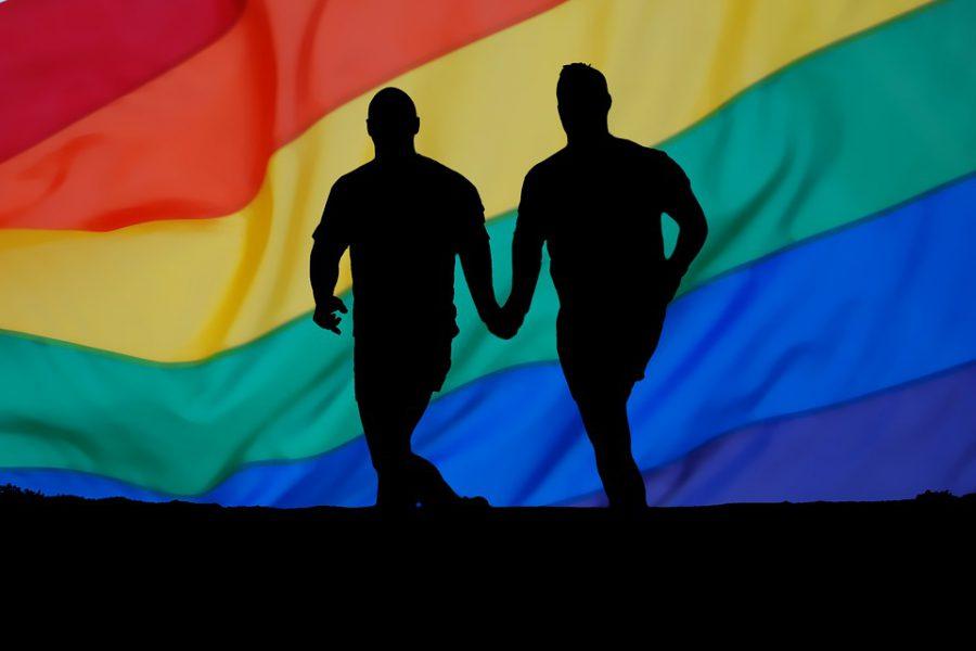 Homophobie. combattre la discrimination à l'école, au travail et dans l'accès aux soins de santé