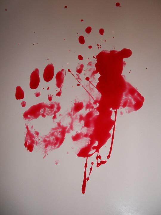 Massacres et viols collectifs. Soupçons de crimes contre l'humanité en Centrafrique