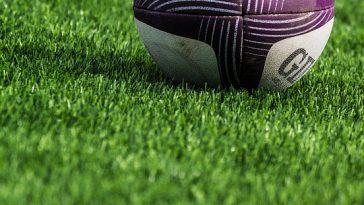 Daniel Mienie, pilier sud africain signe au Stade Toulousain
