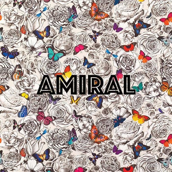 Les toulousains Amiral sortent un 1er album au goût suave et acidulé