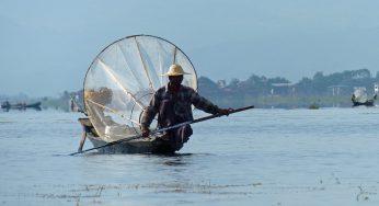 """Birmanie """"la tragédie qui frappe les Rohingyas"""""""