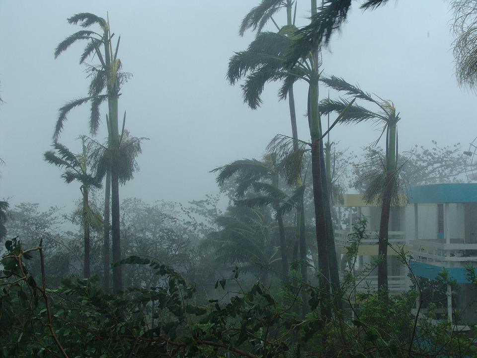 L'ouragan Irma menace Martinique et Guadeloupe
