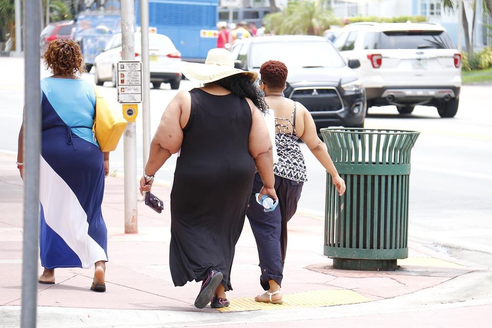 Surpoids et obésité. les bébés et jeunes enfants sous surveillance