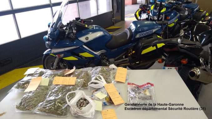 Toulouse. le flair du chien Lazer permet de découvrir 10 kilos de drogue