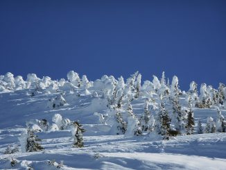 Jusqu'à 1 mètre de neige fraîche dans les Pyrénées