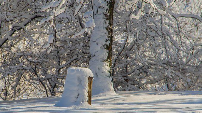 Météo Toulouse. froid et pluie lundi, neige mardi matin