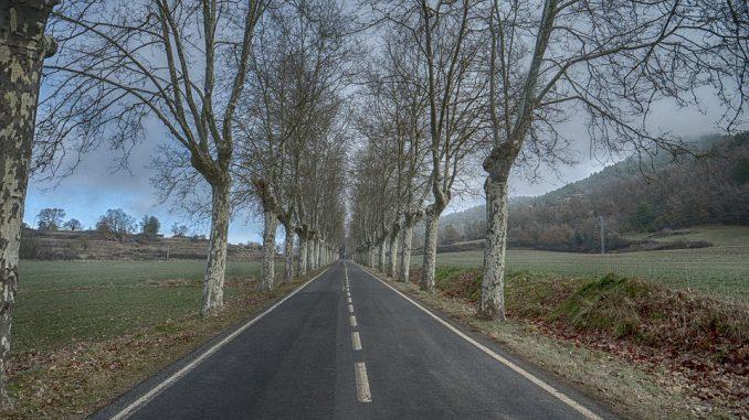Limitation de vitesse à 80 km/h vers une adaptation selon la dangerosité des routes ?