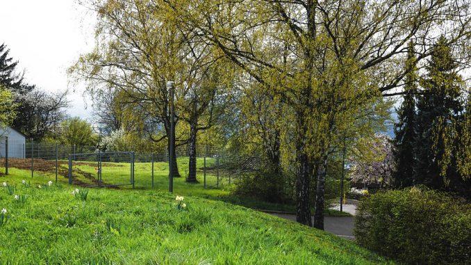 Grand soleil et nouvelle hausse des températures ce mardi à Toulouse. L'anticyclone s'installe sur la France et le sud ouest. Conséquence, le soleil sera une nouvelle fois rayonnant ce mardi sur la plaine toulousaine. Les températures augmentent encore. Cette situation estivale va se prolonger ces prochains jours sur tout le sud ouest jusqu'à dimanche. Malgré quelques passages nuageux dans le sud du département. Météo France envisage un changement de temps en début de semaine prochaine. Il est à noter que les départements des Pyrénées sont placés en alerte vigilance jaune pour fort risque d'avalanches.