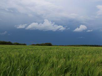 Orages Inondations. la Haute Garonne en alerte vigilance