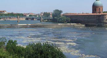 Toulouse. Un homme tombe dans la Garonne en pleine fête de la musique