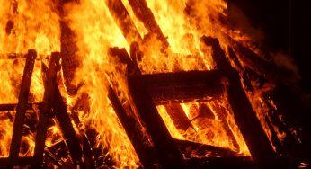 Tarbes. le feu de la Saint Jean se prépare à Ibos