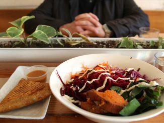 10 restaurants pour manger Vegan en Occitanie et dans le sud ouest