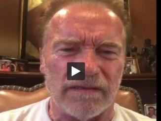 Arnold Schwarzenegger traite Donald Trump de petite nouille molle