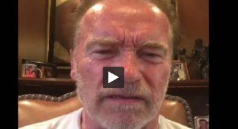 "Arnold Schwarzenegger traite Donald Trump de ""petite nouille molle"""