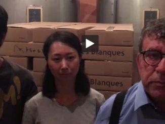 Banyuls (66). un couple de vignerons Japonais menacés d'expulsion !