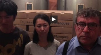 Banyuls (66). un couple de vignerons Japonais menacé d'expulsion !