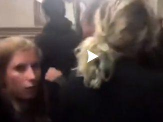 Belgique : Intervention musclée d'activistes animaliers dans un abattoir (Vidéo)
