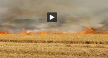 Nord. impressionnant incendie dans un champ