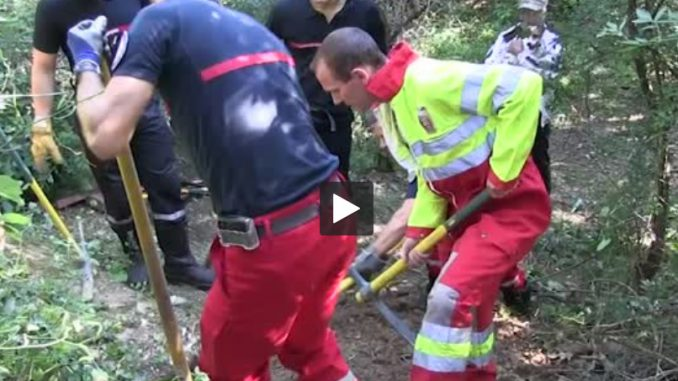 Toulouse. Les pompiers sauvent un chien coincé sous terre depuis 20 heures