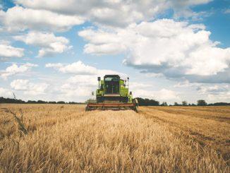 La Haute Garonne débloque 500 000 euros pour les agriculteurs victimes des intempéries