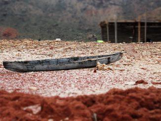 Au Yemen, la famine et la guerre pour 18 millions de personnes
