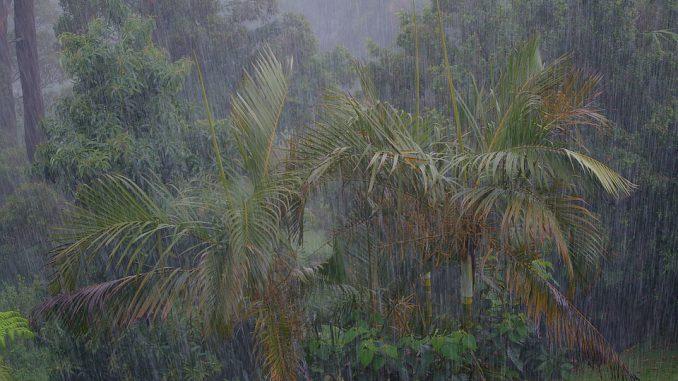 Guadeloupe et Martinique en Alerte rouge cyclone