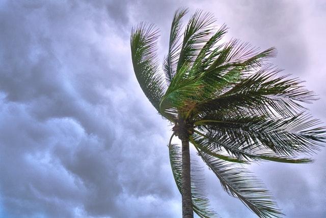 Typhon Jebi, des vents de 209 km/h mesurés au Japon