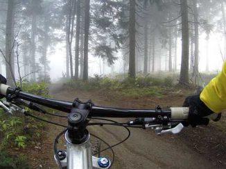 Ariège. un cycliste gravement blessé par un tir de chasseur
