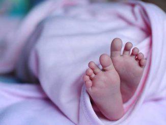 Bébés sans bras, nouveaux cas identifiés