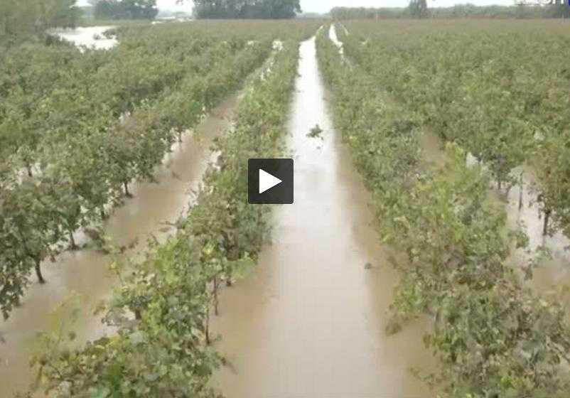 Inondations dans l'Aude. l'économie locale durement touchée