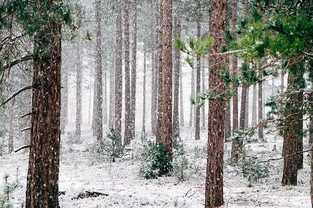 La neige a atteint jusqu'à 50 centimètres