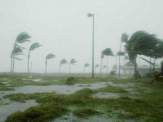 Les impressionnants dégâts de l'ouragan Michael vus du ciel