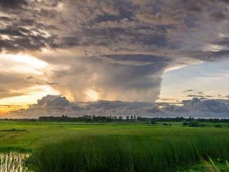 L'ouragan Michael a frappé la Floride