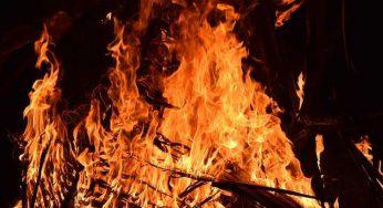 Un incendie au sud de Paris ravage 80 hectares de forêt
