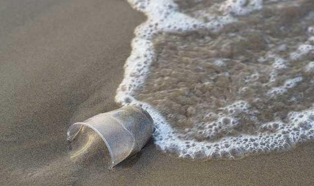 Initiative internationale pour éliminer les plastiques dans les océans